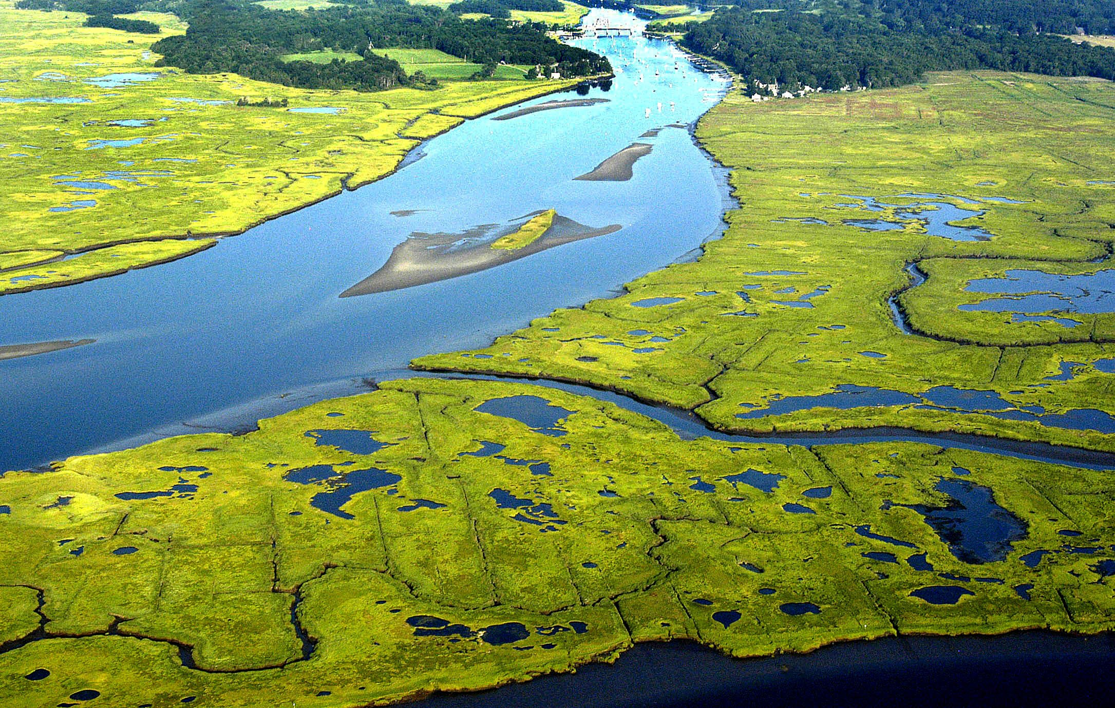 DISCOVER THE GREAT MARSH